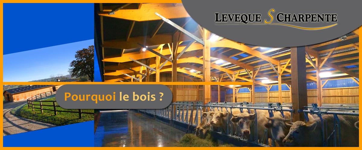 LEVEQUE S CHARPENTE – Étude, construction et montage de bâtiments en charpente bois lamellé collé et charpente mixte (bois lamellé collé et métal/béton)